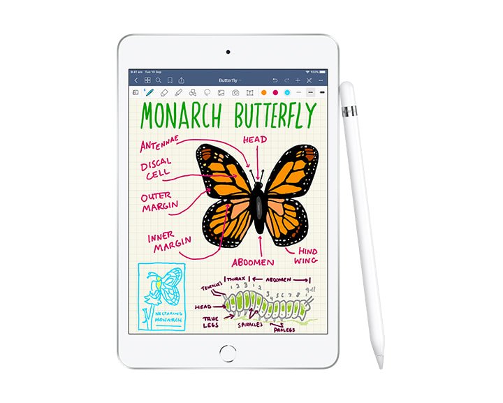 Apple iPad with Apple Pencil - let your students' imagination soar to new heights.